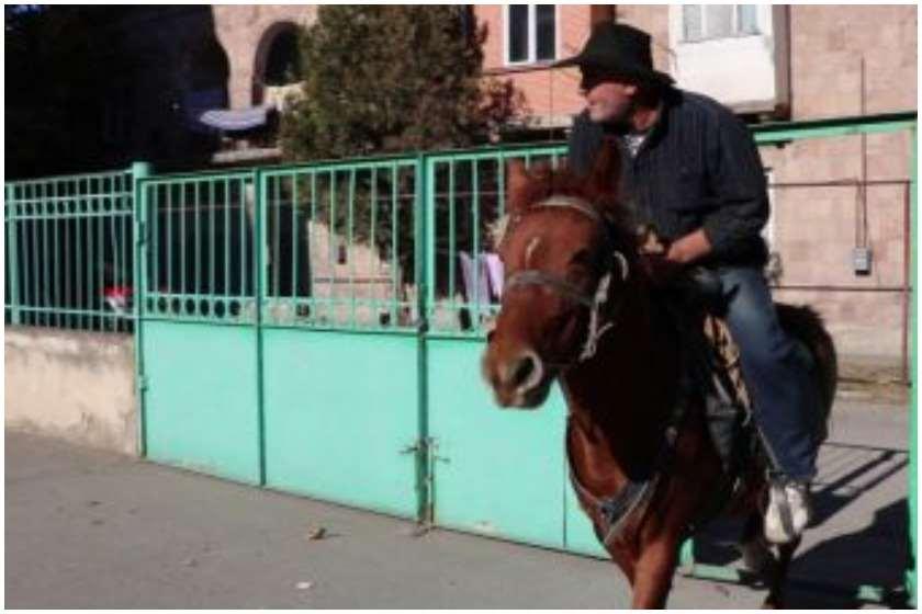 გორში ამომრჩეველი ცხენით მივიდა