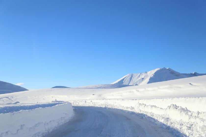 თოვლიანი გზა