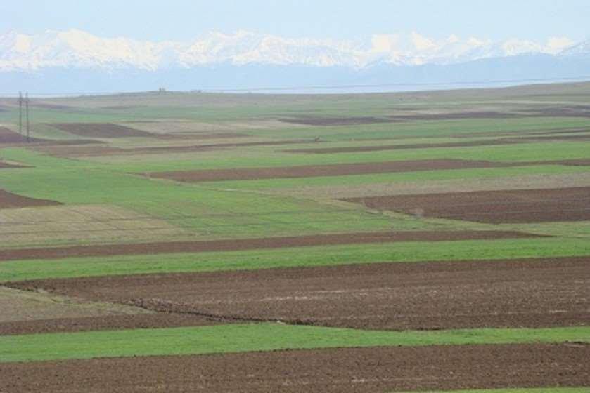 მიწების რეგისტრაცია