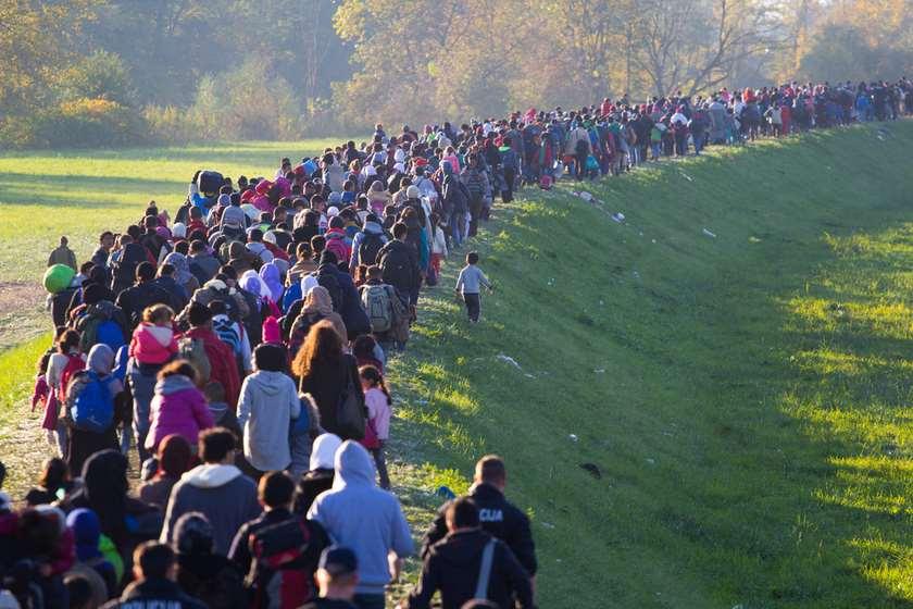 მიგრანტთა კრიზისი