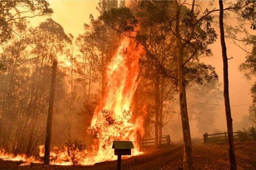 ტყის ხანძარი ავსტრალია