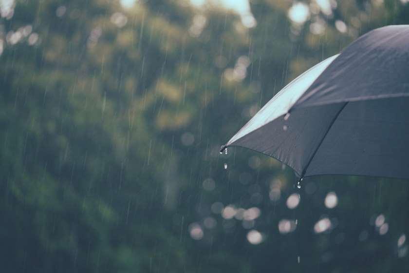 წვიმა ქოლგა ამინდი