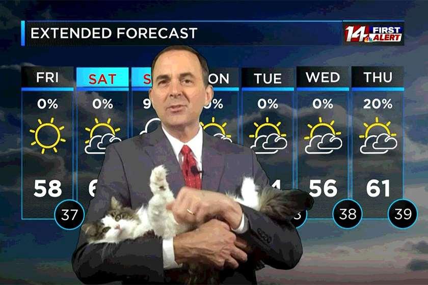 კატა ამინდის პროგნოზი
