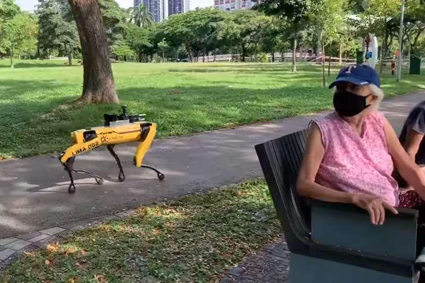 Boston Dynamics-ის რობოტი-ძაღლი