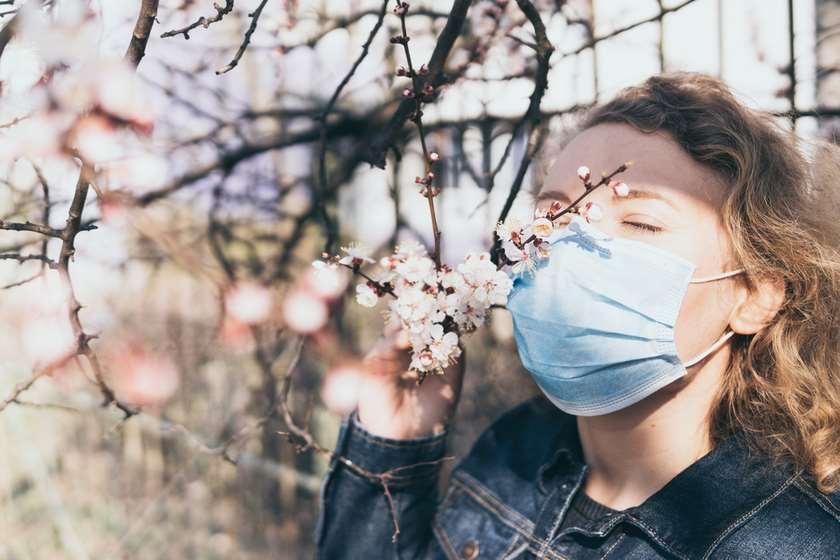 ყნოსვის შეგრძნება