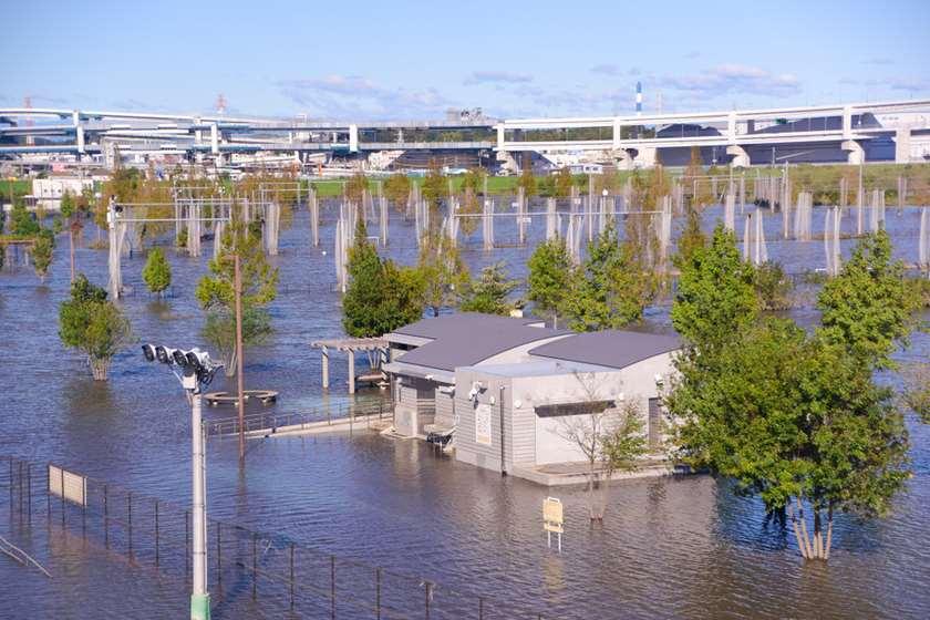 იაპონია, წყალდიდობა, არქივი.