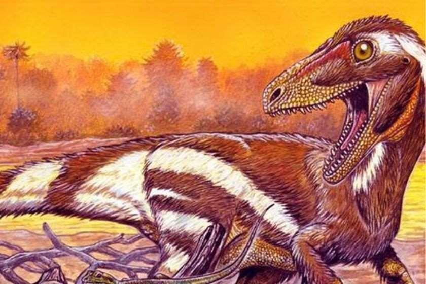 Aratasaurus museunacionali