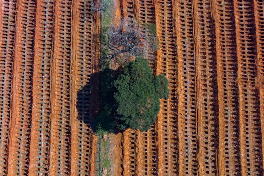 სან-პაულუ, კორონავირუსით გარდაცვლილთა საერთო საფლავი