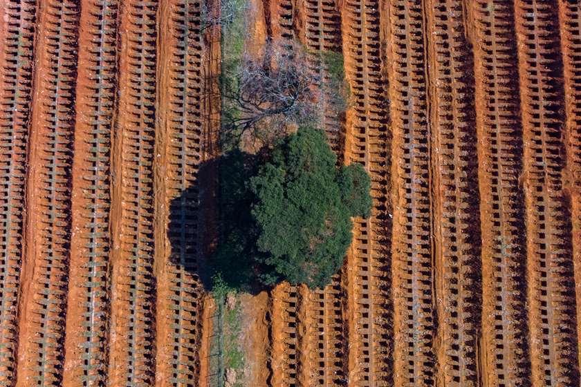 სან-პაულუ, კორონავირუსით გარდაცვლილთა სასაფლაო